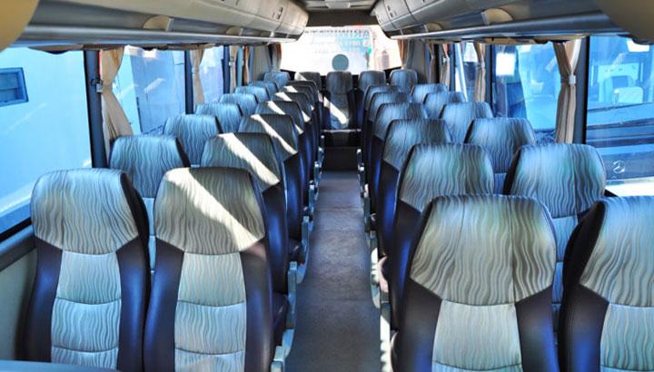 bus pariwisata